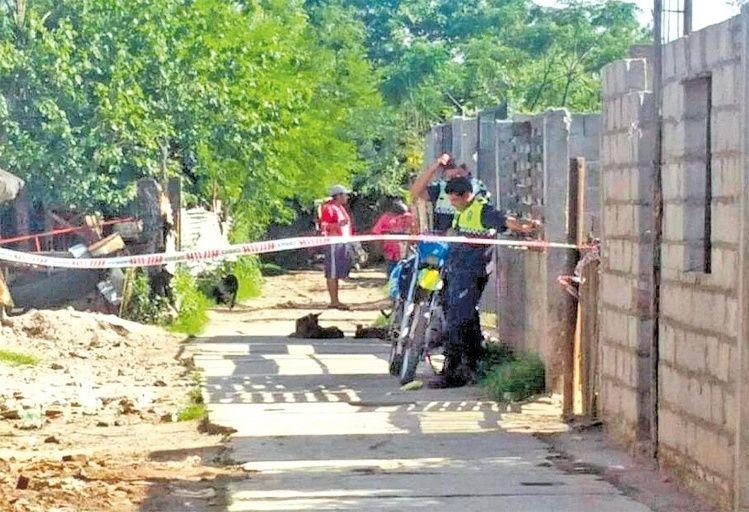 Hallaron a una joven enterrada y descuartizada en su patio