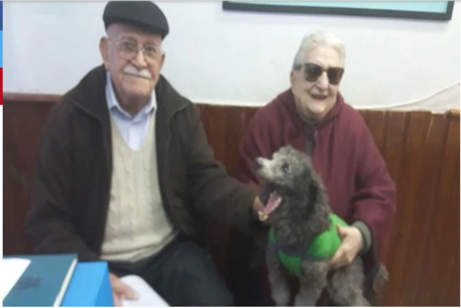 Pareja de ancianos ofrecen su jubilación para recuperar a su perrita robada