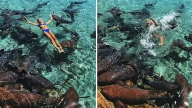 El momento en el que un tiburón ataca a una modelo