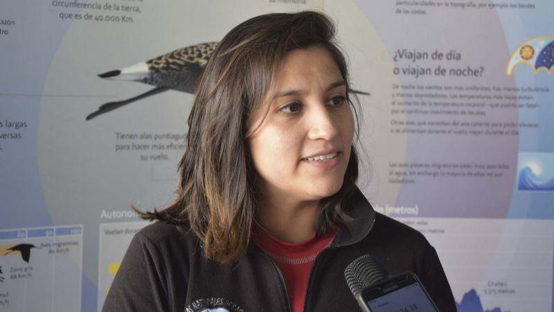 Continúa la séptima edición del Festival de Aves Playeras