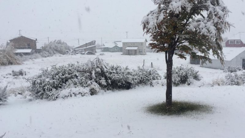 Intense snowfall is recorded in western Santa Cruz